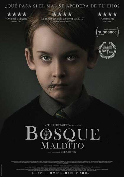 BOSQUE MALDITO