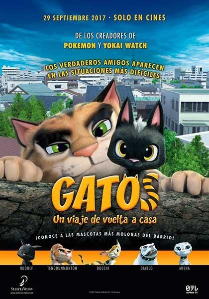GATOS. UN VIAJE DE VUELTA A CASA